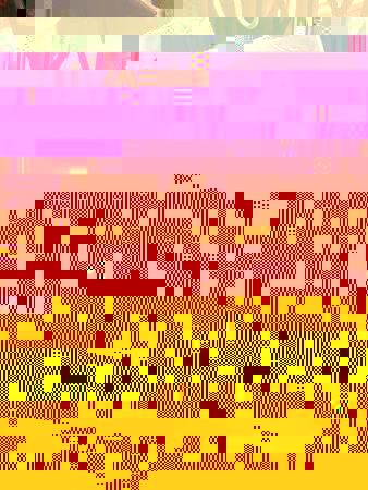 b26032010slsiccia